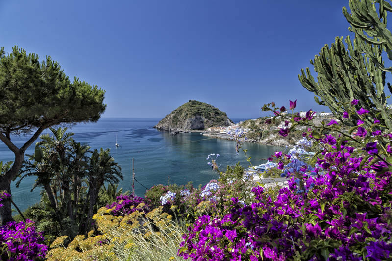 Photo de Ischia (Campania region)