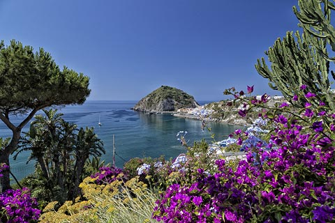 Photo of Ischia