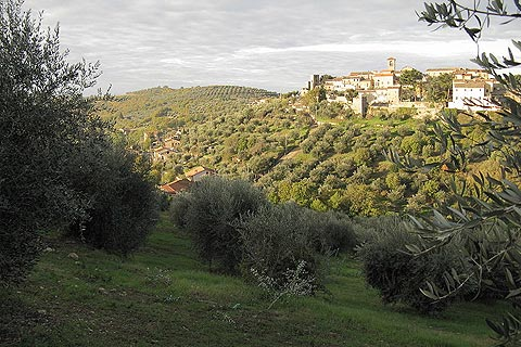 Photo of Magione (Umbria region)