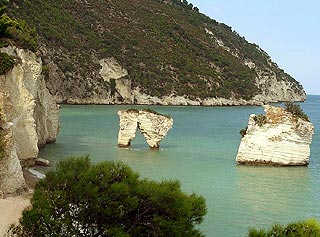 Rocks of Faraglioni on the coast near Mattinata