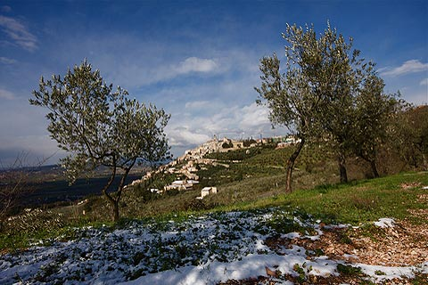 Photo of Trevi (Umbria region)