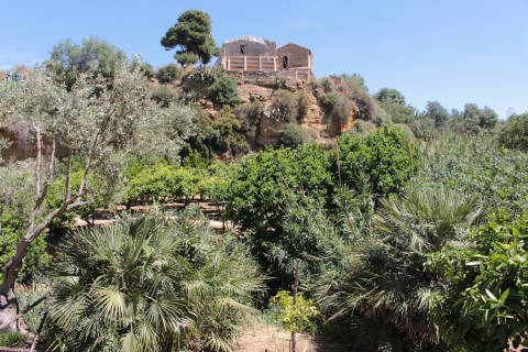 Walk through Gardens of the Kolymbethra
