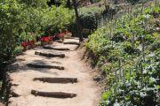 garden-walk_1