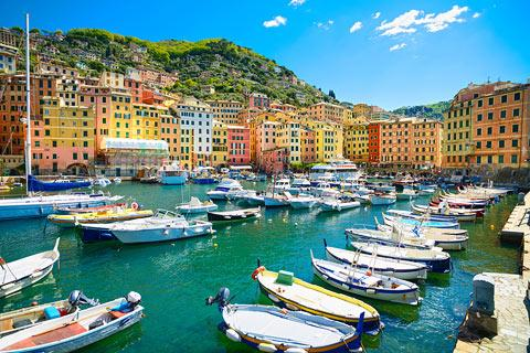 boats and colourful houses around Camogli harbour