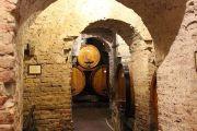 wine-cellars