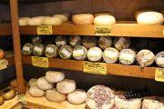 pecorino-cheese-shop