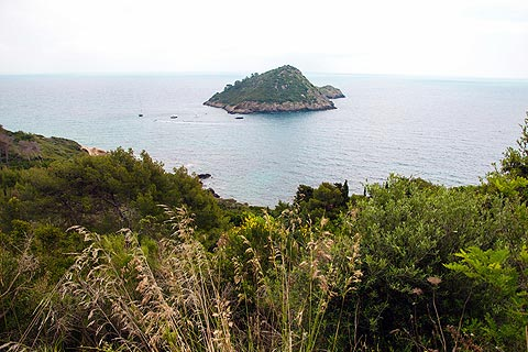 small island seen from headland at Porto Ercole