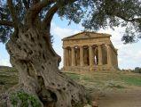 agrigento-temple-concordia